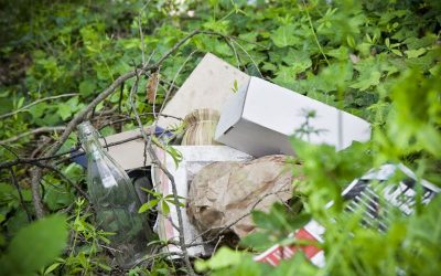 Illegal Dumping – Why It Needs To Be Avoided At All Costs