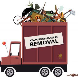 McJunk remove junk