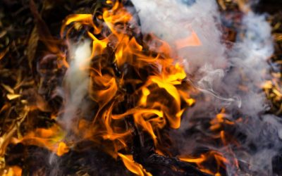 What You Need To Know About The Effects Of Trash Burning